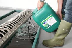 Pouring Hoof Fit Bath Solution